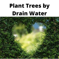 Plant tree to save water in appliances