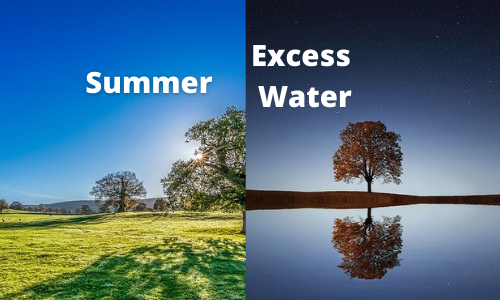 How to save water during summer and when it is available in excess
